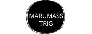 マルマストリグ株式会社